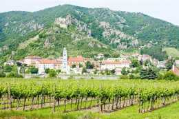 20141006190212475200_shutterstock_60925426_Durnstein, vineyard in Wachau Region, Lower Austria, Austria